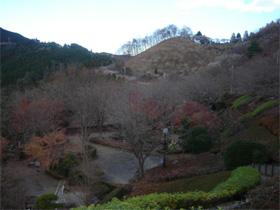 桜山森林公園(2)