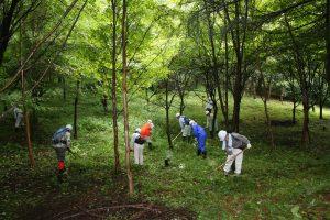 08231森林ボランティア